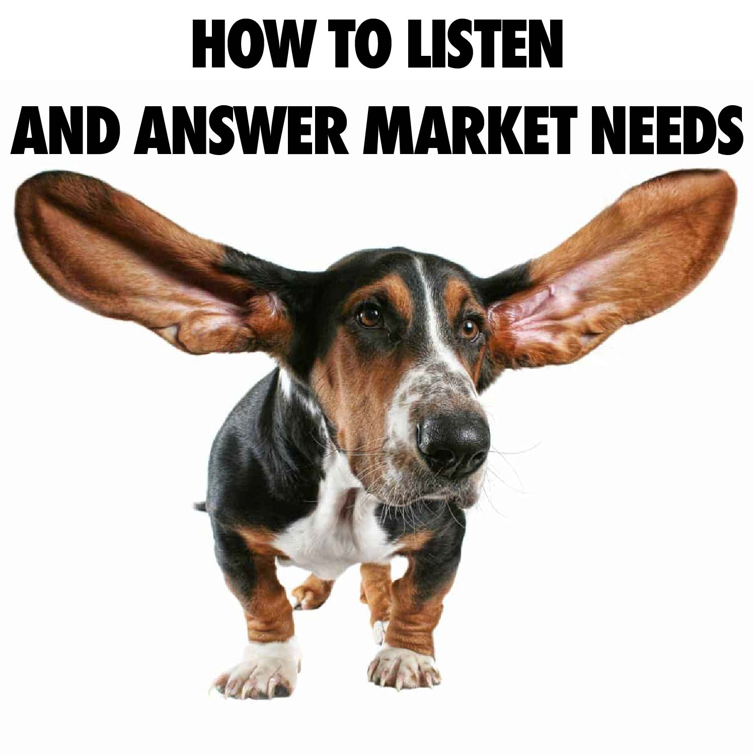 Image of a short dog with VERY big ears spread wide. Title: HOW TO LISTEN AND ANSWER MARKET NEEDS